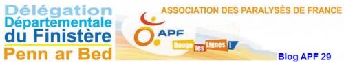 blog APF 29.jpg
