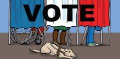 vote handi.jpg