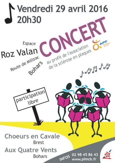 concert 29042016.jpg